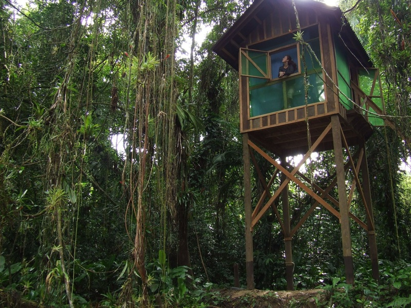 Sebuí Reserve with a watchtower