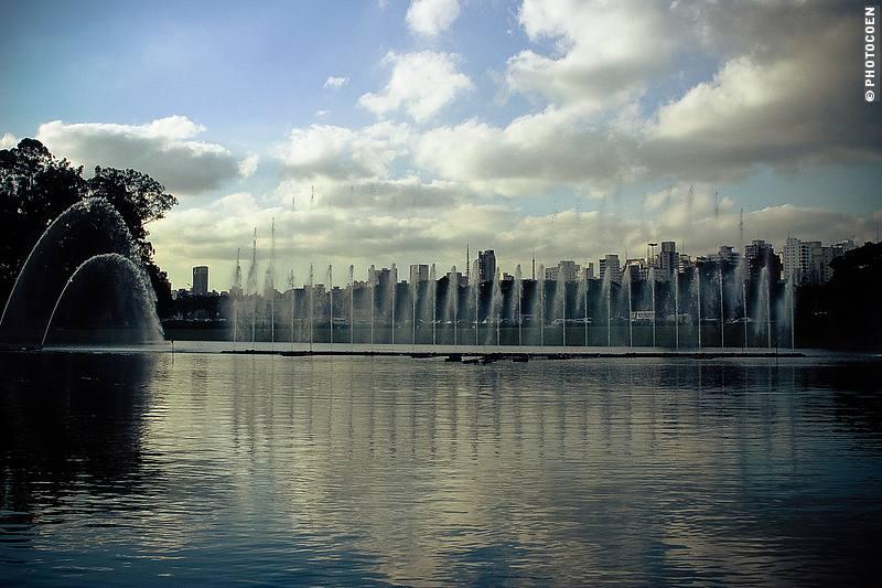 Exploring São Paulo - strolling through a park