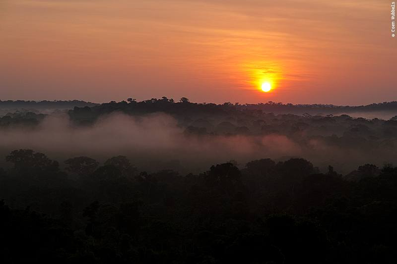 Sunrise above the Brazilian Amazon (©photocoen)