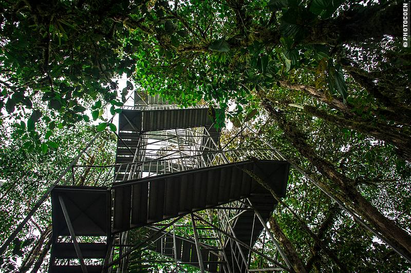 Watch tower at Mashpi Eco Lodge in Ecuador (©photocoen)