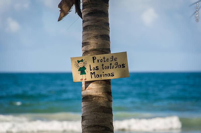 Pui Pui Beach, Paria Peninsula in Venezuela (©photocoen)