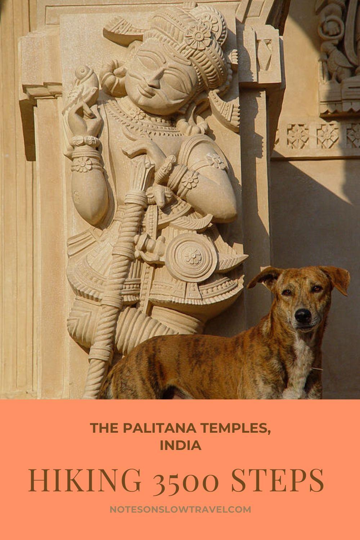 The Palitana Temple, India (©Coen Wubbels)