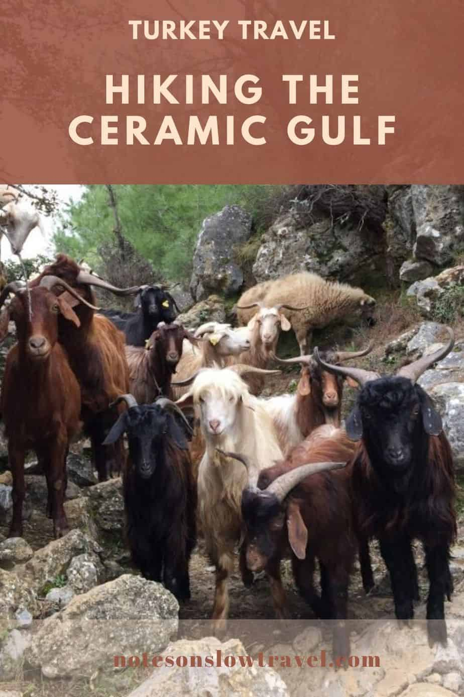 Hiking the Ceramic Gulf, Turkey - goat trails