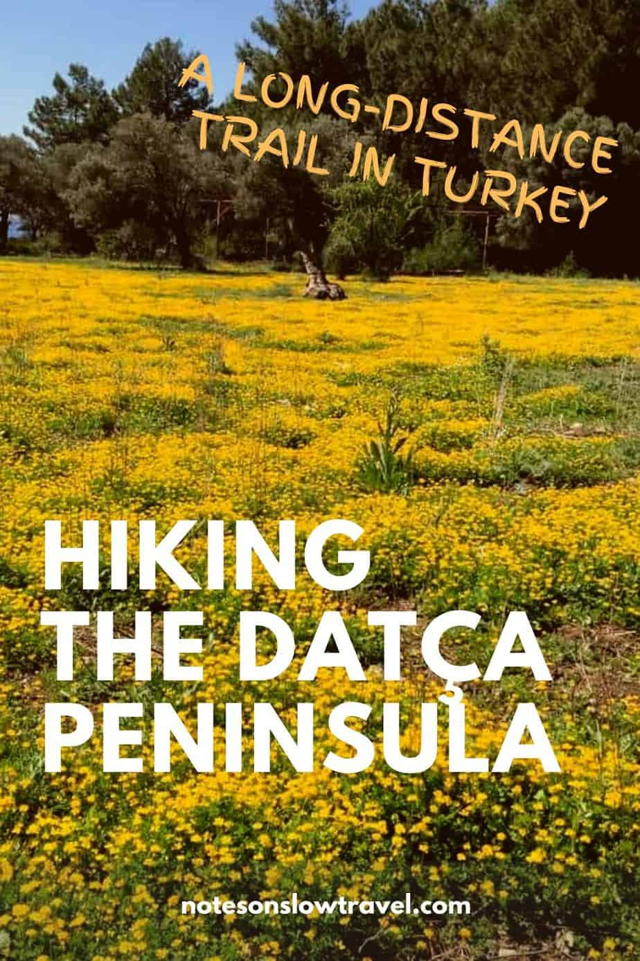 Hiking the Datça Peninsula, Turkey - fields with yellow flowers