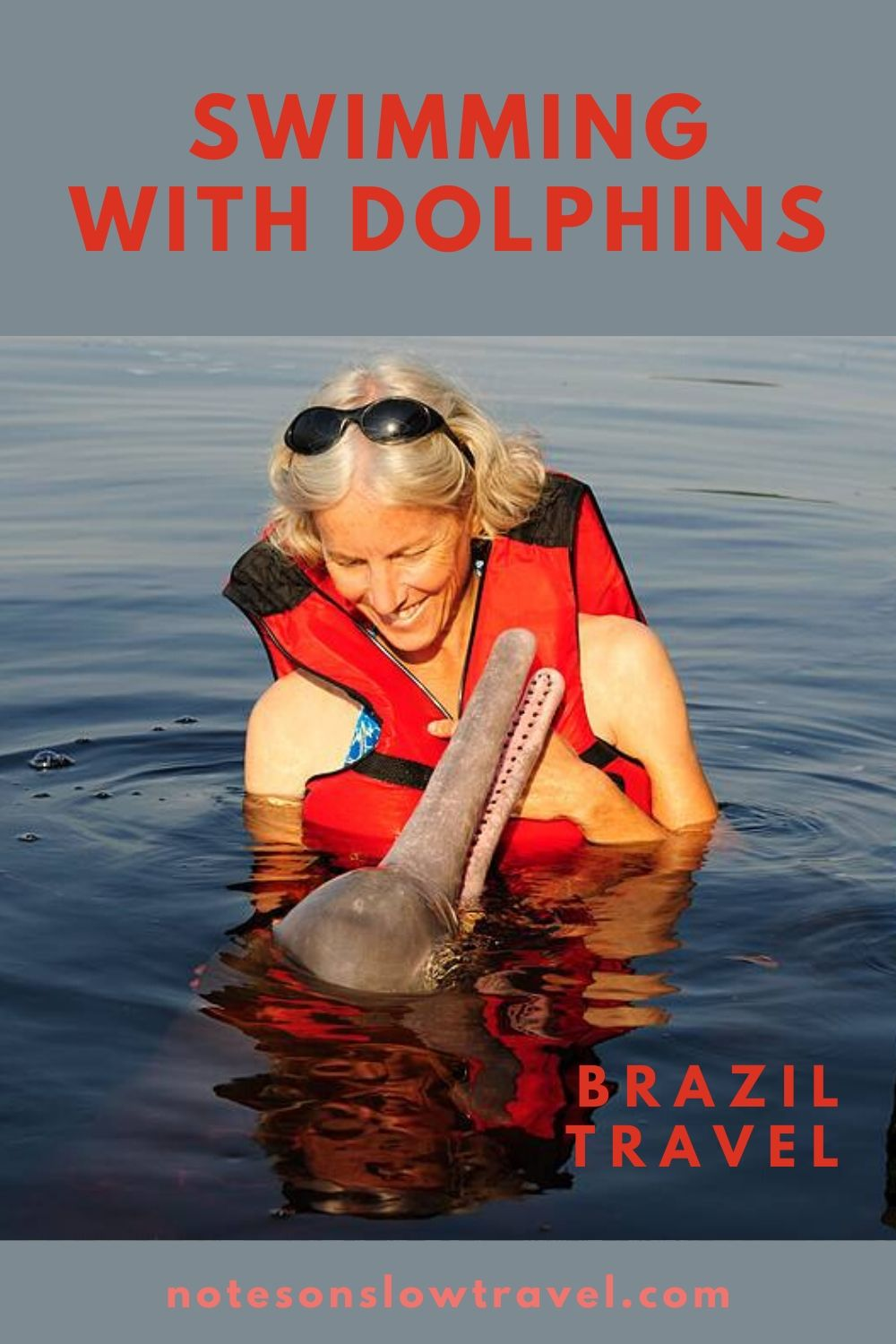 Swimming with Dolphins, Brazil