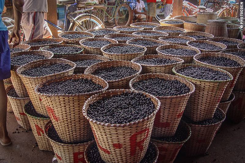Açaí berries in baskets on the açaí market in Santana, Brazil
