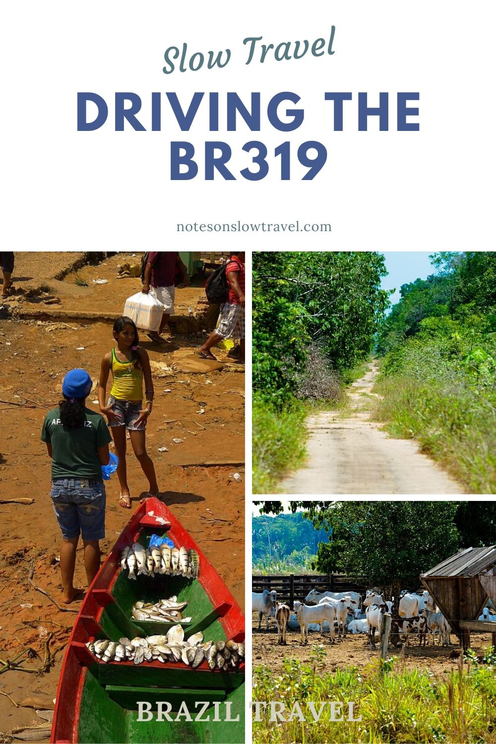 Slow Travel - Driving the BR319, Brazil